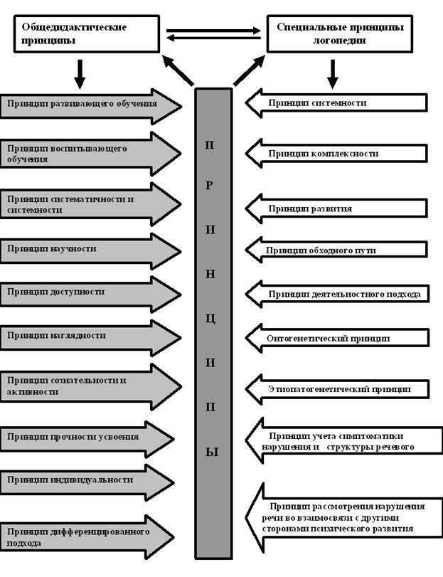 Принципы логопедии как науки - схема, таблица.